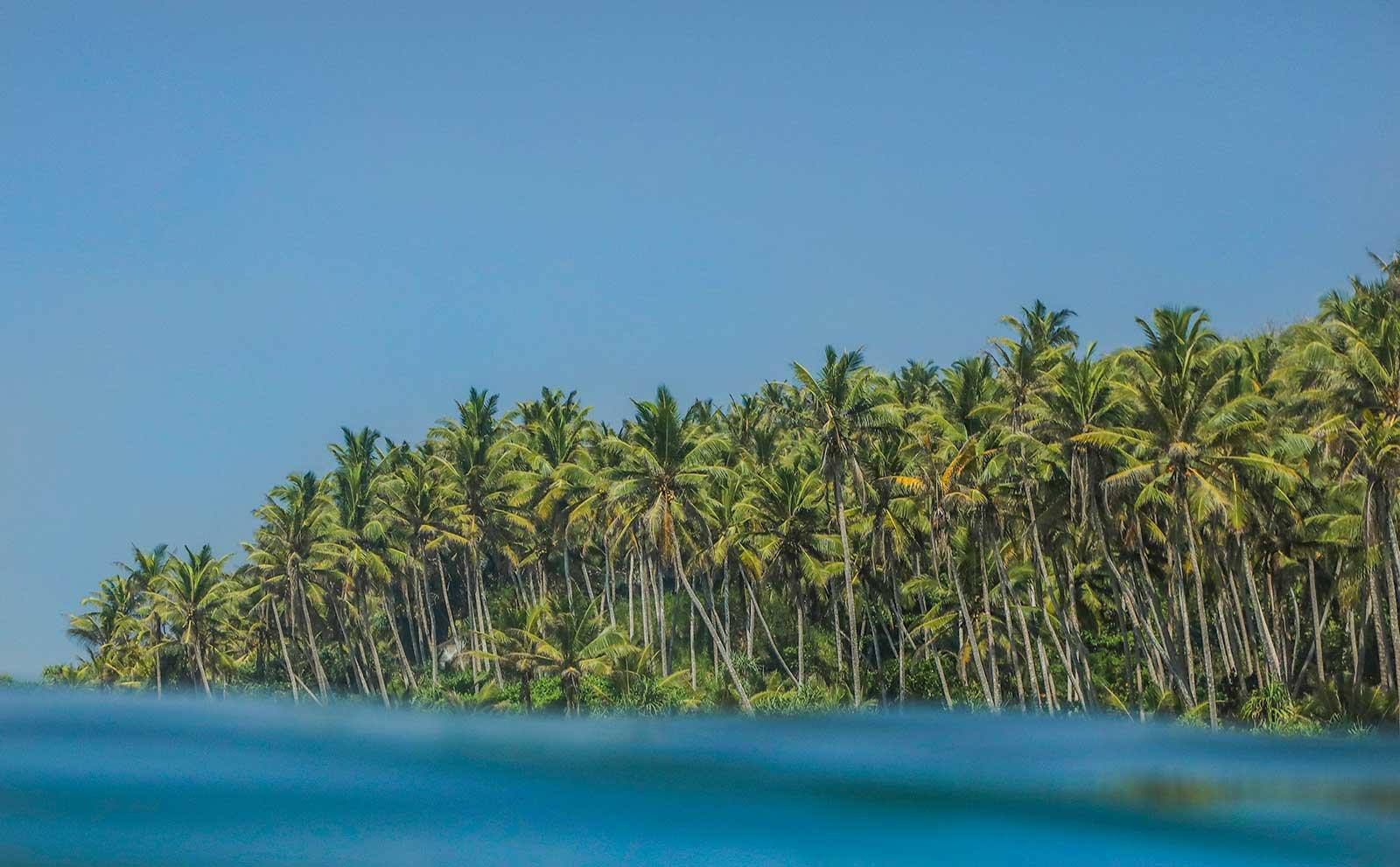 15 of the Best Beaches in Sri Lanka